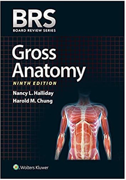 BRS Gross Anatomy 9th Edition PDF
