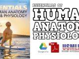 Essentials of Human Anatomy & Physiology PDF