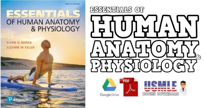 Essentials of Human Anatomy & Physiology PDF