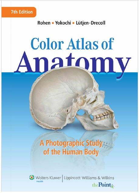 Color-Atlas-of-Anatomy-7TH-Edition PDF