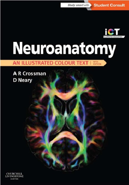 Neuroanatomy: an Illustrated Color Text, 5th Edition PDF