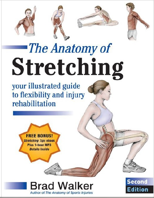 The Anatomy of Stretching 2nd Edition PDF