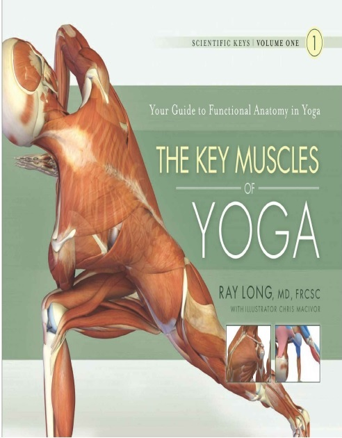 The Key Muscles of Yoga PDF